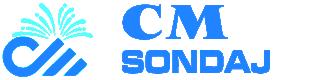 CMSondaj